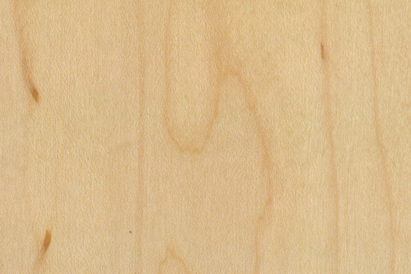 Wood Stain Cabinet Doors Vancouver 604 770 4171