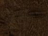 08 maple-100-4791