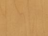 10 maple-501w