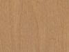12 maple-512w-shade
