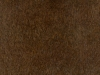 16 maple-514w-shade